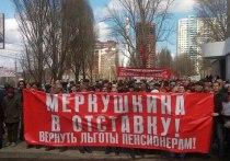 Социальный марш в Самаре: отставки Меркушкина требовали больше трех тысяч человек