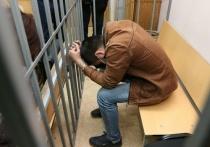 Второй подозреваемый в подготовке теракта не возражал против ареста