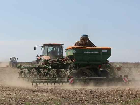 С 2018 года в Крыму начнут производить подсолнечное масло