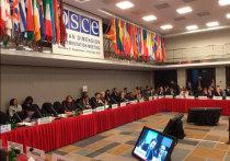 ОБСЕ оказалась закрытой трибуной для крымчан